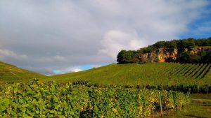 florimont-terroirs